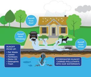 stormwater-diagram